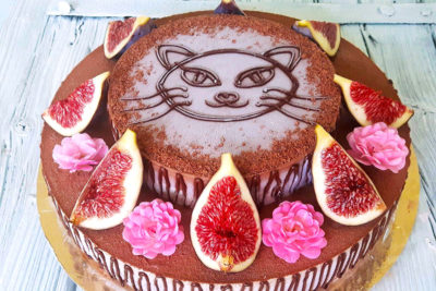 Dvoupatrový raw dort kočička